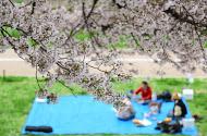 vacanza di primavera