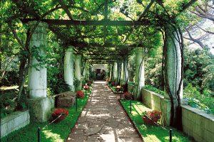 Villa San Michele - Visuale