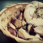 Come piantare l'aglio